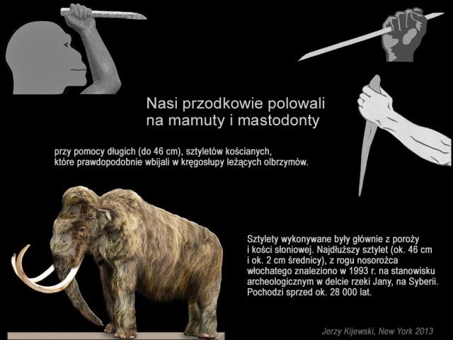 Mamuty i Mastodonty.